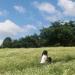 収穫体験0331